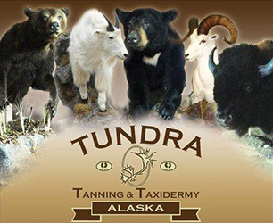 Tundra Tanning & Taxidermy